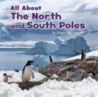 All About the North and South Poles