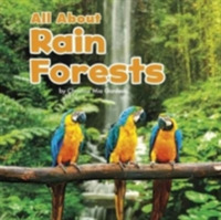 All About Rainforests