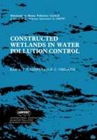 Constructed Wetlands in Water Pollution