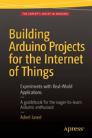 Building Arduino Projects for the Intern