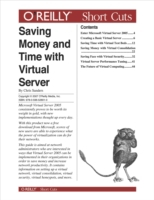 Saving Money and Time with Virtual Serve