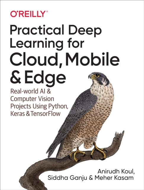 Practical Deep Learning for Cloud, Mobil