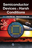 Semiconductor Devices in Harsh Condition
