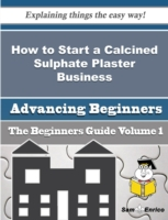 How to Start a Calcined Sulphate Plaster