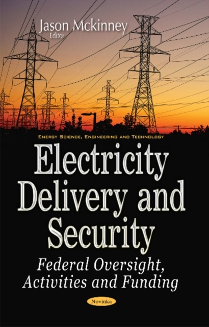 Electricity Delivery & Security