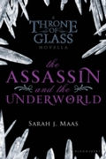 Assassin and the Underworld