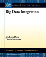 Big Data Integration