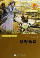 Wonderful Wizard of Oz (Chinese Edition)