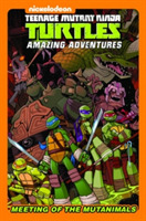 Teenage Mutant Ninja Turtles Amazing Adv