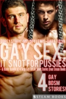 Gay Sex: It's Not For Pussies - A Kinky