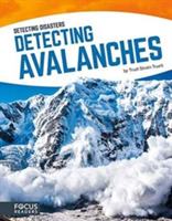 Detecting Avalanches