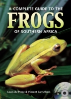 Complete Guide to the Frogs of Southern