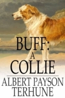 Buff: A Collie
