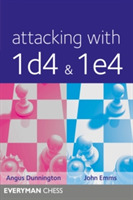 Attacking with 1d4 & 1e4