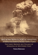 Micromorphological Analysis of Activity