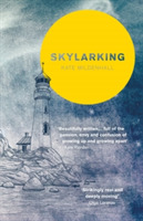 Skylarking: Striking fiction rooted in a