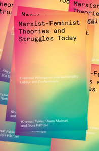 Marxist-Feminist Theories and Struggles