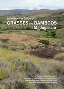 Identification Guide to Grasses and Bamb