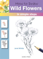 How to Draw: Wild Flowers