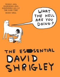 What The Hell Are You Doing?: The Essent
