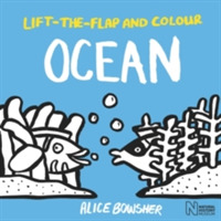 Lift-the-flap and Colour Ocean