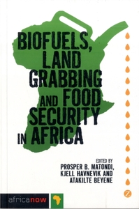 Biofuels, Land Grabbing and Food Securit