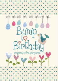 Bump to Birthday, Pregnancy & First Year