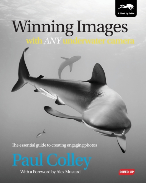 Winning Images with Any Underwater Camer