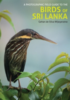 Photographic Field Guide to the Birds of