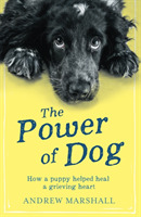 The The Power of Dog