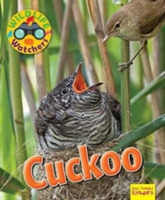 Wildlife Watchers: Cuckoo