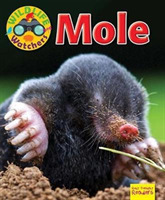 Wildlife Watchers: Mole
