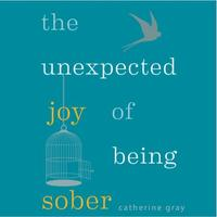 The Unexpected Joy of Being Sober: Discovering a happy, healthy, wealthy al