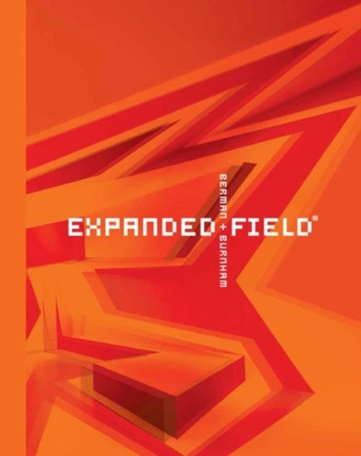 Expanded Field: Installation Architectur