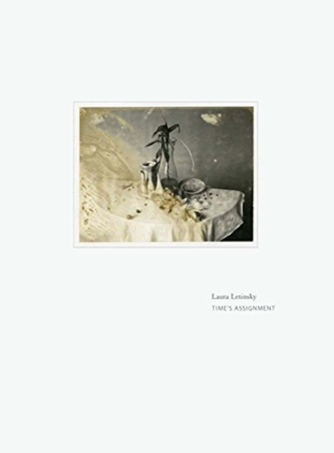 Laura Letinsky - Time's Assignation