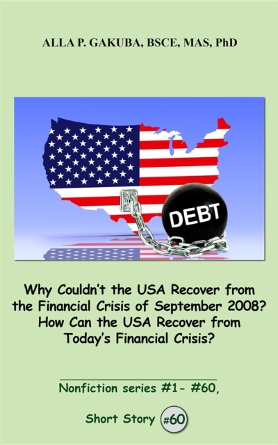 """Bilde av Why Couldn""""t The Usa Recover From The Fi'"""