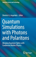 Quantum Simulations with Photons and Pol