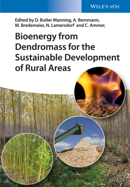 Bioenergy from Dendromass for the Sustai