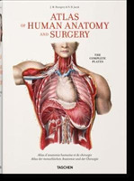 Bourgery. Atlas of Human Anatomy and Sur