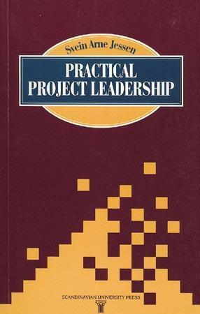 Practical project leadership