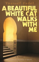 A Beautiful White Cat Walks with Me