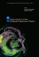 Open Issues In Core Collapse Supernova T