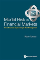 Model Risk In Financial Markets: From Fi